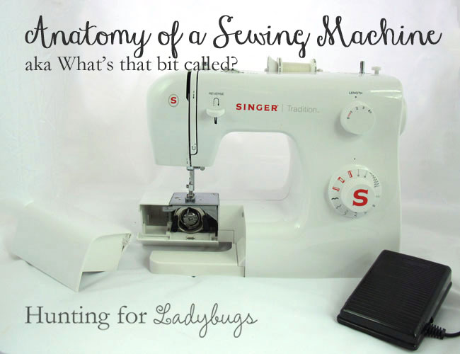 Tour Of Your Sewing Machine What's That Part Called Simple Reverse Button On Sewing Machine